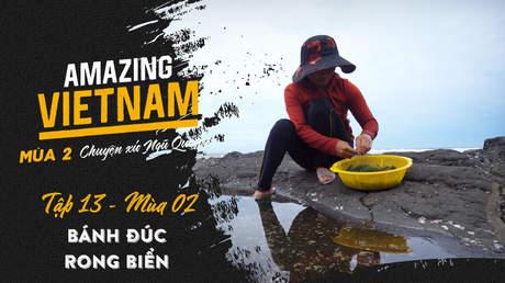 Amazing Vietnam Mùa 2 - Tập 13: Bánh đúc rong biển