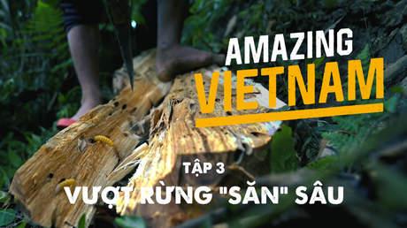 """Amazing Vietnam - Tập 3: Vượt rừng """"săn"""" sâu"""