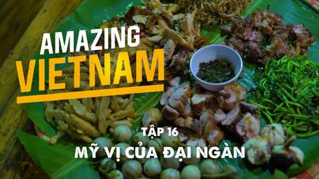 Amazing Vietnam - Tập 16: Mỹ vị của đại ngàn