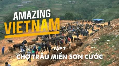 Amazing Vietnam - Tập 7: Chợ trâu miền sơn cước