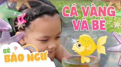 Bé Bào Ngư - Cá vàng và bé