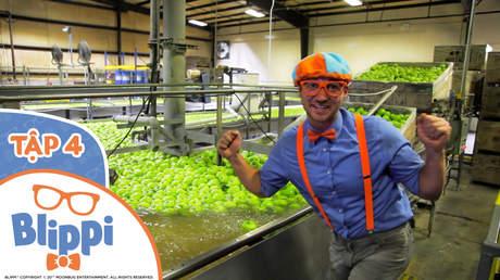 Blippi - Tập 4: Blippi ghé thăm nhà máy cung cấp táo