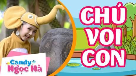 Candy Ngọc Hà - Chú voi con