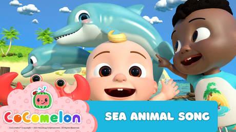 CoComelon: Sea Animal Song