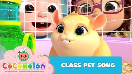 CoComelon: Class Pet Song
