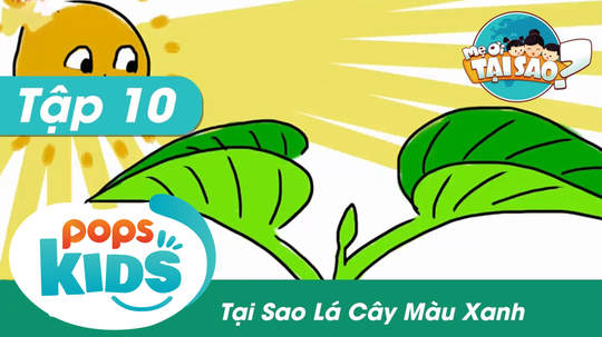 Mẹ ơi tại sao - Tập 10: Tại sao lá cây màu xanh