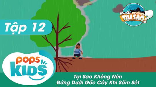 Mẹ ơi tại sao - Tập 12: Tại sao không nên đứng dưới gốc cây khi sấm sét?