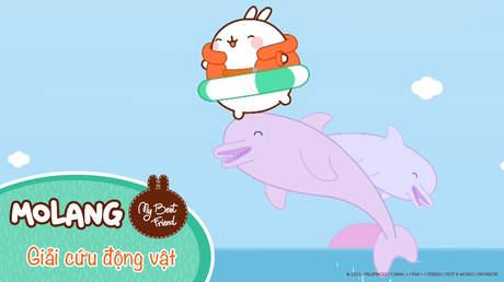 Molang - My best friend - Tập 56: Giải cứu động vật