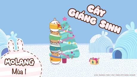 Molang S1 - Tập 7: Cây Giáng Sinh