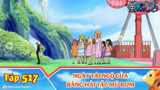 One Piece S15 - Tập 517: Ngày tái ngộ của băng hải tặc Mũ Rơm