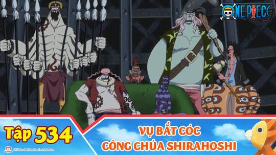 One Piece S15 - Tập 534: Vụ bắt cóc công chúa Shirahoshi