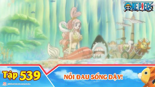 One Piece S15 - Tập 539: Nỗi đau sống dậy!
