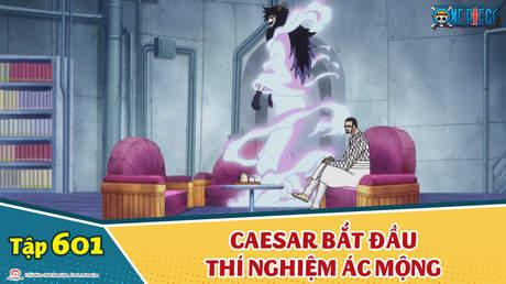 One Piece S16 - Tập 601: Caesar bắt đầu thí nghiệm ác mộng