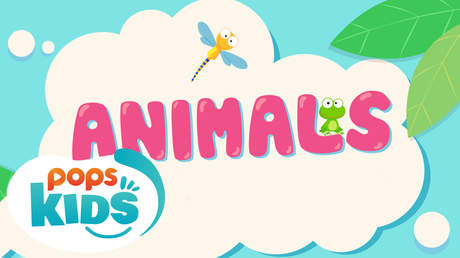 POPS Kids Lesson - Animals