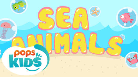 POPS Kids Lesson - Sea animals