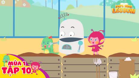 POPS Kids Lesson S1 - Tập 10: Vegetables