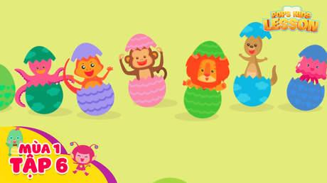 POPS Kids Lesson S1 - Tập 6: Animals