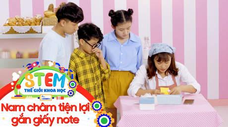 STEM - Tập 47: Nam châm tiện lợi gắn giấy note