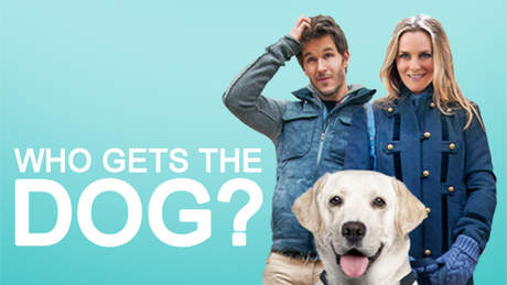 ฮู เกตส์ เดอะ ด็อก | Who Gets the Dog?
